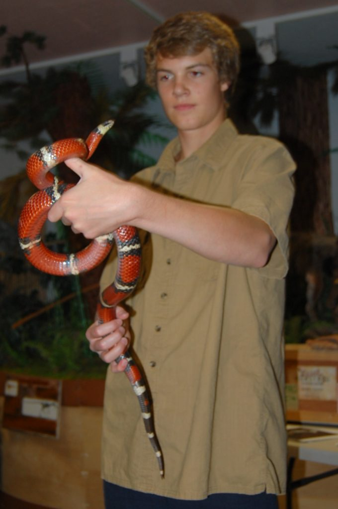 Highland resident and Hutchings Museum volunteer Zane Muhlestein displays a non-poisonous snake during the afternoon show. Photo: Cavett Ishihara