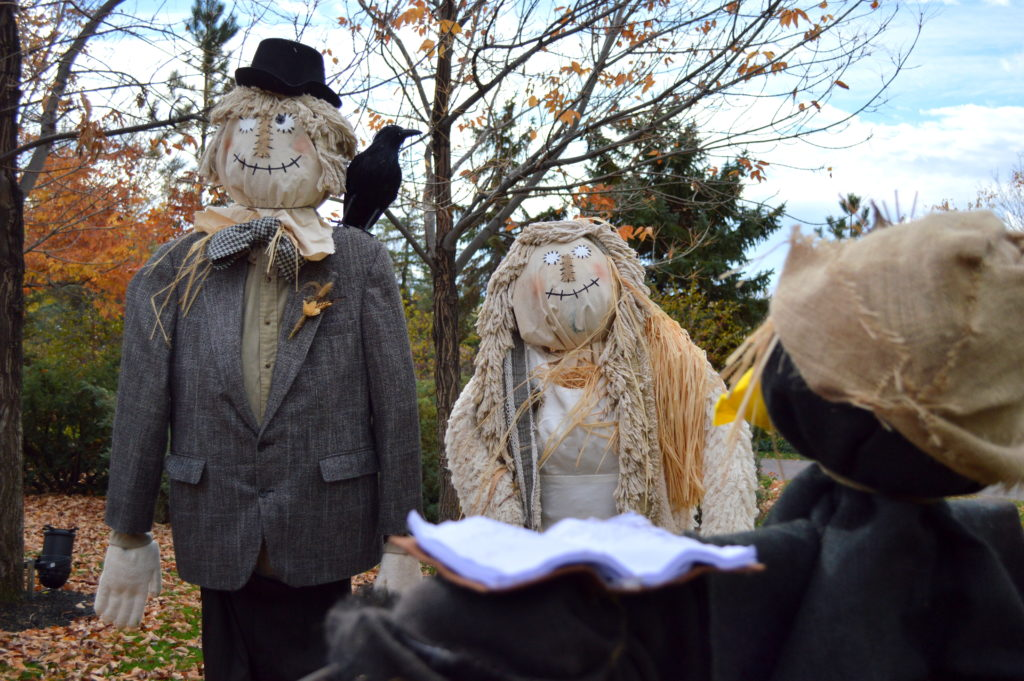 A crow marries two scarecrows. Photo: Nicole Kunze